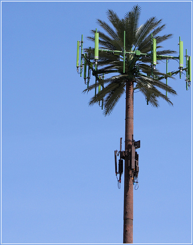 Fake Palm Tree